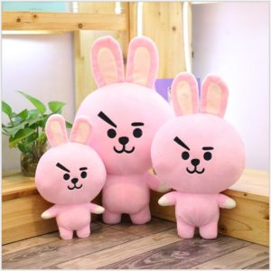 PELUCHES BT21 - 2189-90-04 COOKY